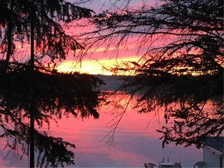 Photo 36: 28 Dobals Road North in Lac Du Bonnet RM: Lee River Estates Residential for sale (R28)  : MLS®# 202009677