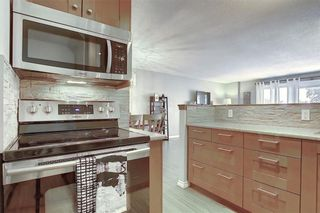 Photo 8: 78D 231 HERITAGE Drive SE in Calgary: Acadia Apartment for sale : MLS®# C4305999