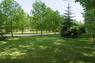 Photo 53: 30012 Highway #1 E in Portage la Prairie RM: House for sale : MLS®# 202118667