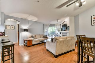 Photo 6: 19528 Fraser Highway in Surrey: Cloverdale Condo for sale : MLS®# R2098502