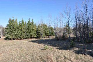 Photo 5: 10 57126 Range Road 12: Rural Barrhead County Rural Land/Vacant Lot for sale : MLS®# E4241768