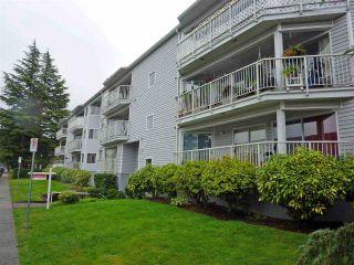 Photo 1: 204 22222 119 Avenue in Maple Ridge: West Central Condo for sale : MLS®# R2459367