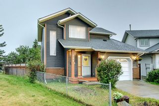 Photo 49: 144 Martinwood Court NE in Calgary: Martindale Detached for sale : MLS®# A1126396