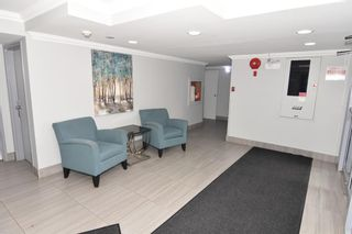 Photo 13: 417 30 Mchugh Court NE in Calgary: Mayland Heights Apartment for sale : MLS®# A1099356