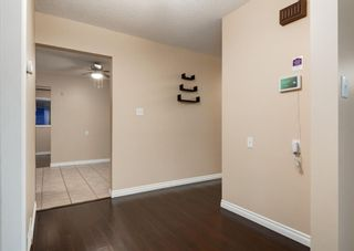 Photo 14: 11039 166 Avenue: Edmonton Detached for sale : MLS®# A1083224