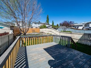 Photo 25: 144 Covington Road NE in Calgary: Coventry Hills Detached for sale : MLS®# A1115677