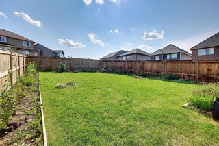 Photo 47: 85 SHERWOOD Square NW in Calgary: Sherwood Detached for sale : MLS®# A1130369