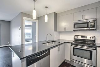 Photo 6: 1406 240 Skyview Ranch Road NE in Calgary: Skyview Ranch Apartment for sale : MLS®# A1139810