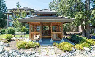 Photo 17: 116 15195 36 Avenue: White Rock Condo for sale (South Surrey White Rock)  : MLS®# R2192480