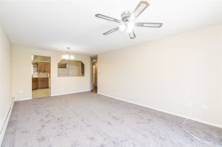 """Photo 8: 205 31930 OLD YALE Road in Abbotsford: Abbotsford West Condo for sale in """"Royal Court"""" : MLS®# R2413572"""