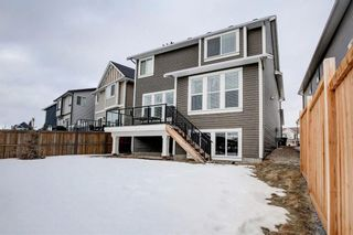 Photo 50: 33 Williamstown Park NW: Airdrie Detached for sale : MLS®# A1056206