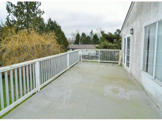 Photo 6: 21695 EXETER Avenue in Maple Ridge: West Central House for sale : MLS®# V1046694