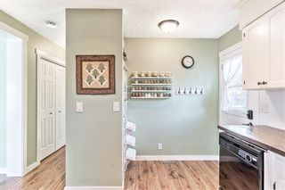 Photo 6: 420 SPRING HAVEN Court SE: Airdrie Detached for sale : MLS®# C4289302