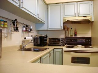 """Photo 4: 113 8451 WESTMINSTER Highway in Richmond: Brighouse Condo for sale in """"ARBORETUM II"""" : MLS®# V844825"""