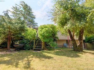 Photo 20: 738 Cameo St in VICTORIA: SE High Quadra House for sale (Saanich East)  : MLS®# 798445
