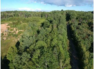 Photo 7: Lot GC-2A Highway 14 in Windsor: 403-Hants County Vacant Land for sale (Annapolis Valley)  : MLS®# 202014708