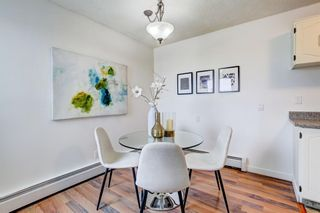 Photo 11: 211 3615A 49 Street NW in Calgary: Varsity Apartment for sale : MLS®# A1131604