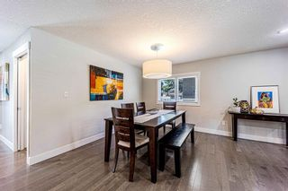 Photo 7: 9 Manor Road SW in Calgary: Meadowlark Park Detached for sale : MLS®# A1116064