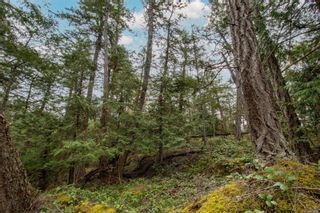 Photo 9: 8803 Canal Rd in : GI Pender Island Land for sale (Gulf Islands)  : MLS®# 874547