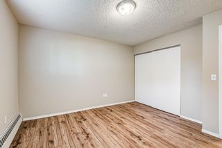 Photo 15: 103 11 Dover Point SE in Calgary: Dover Apartment for sale : MLS®# A1144552