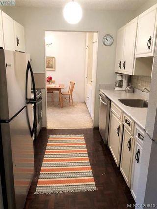 Photo 7: 313 1025 Inverness Rd in VICTORIA: SE Quadra Condo for sale (Saanich East)  : MLS®# 833149