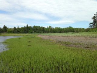 Photo 5: Lot 2 Shore Road in Lower Barneys River: 108-Rural Pictou County Vacant Land for sale (Northern Region)  : MLS®# 202008057