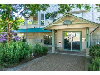 """Photo 2: 304 6390 196 Street in Langley: Willoughby Heights Condo for sale in """"Willow Gate"""" : MLS®# R2070503"""