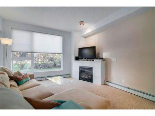 Photo 9: 115 3600 15A Street SW in Calgary: Altadore_River Park Condo for sale : MLS®# C4034020