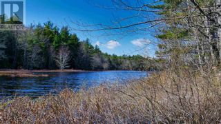 Photo 9: acreage 930 Road in Buckfield: Vacant Land for sale : MLS®# 202108244