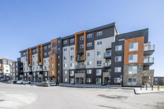 Main Photo: 509 10 Kincora Glen Park NW in Calgary: Kincora Apartment for sale : MLS®# A1090779