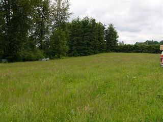 Photo 3: 29744 Downes Rd: House for sale (Abbotsford West)