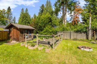 Photo 6: 7951 TEAL Street in Mission: Mission BC House for sale : MLS®# R2581902