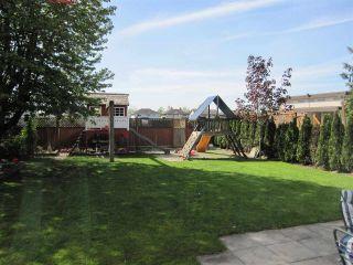 Photo 8: 23280 118 Avenue in Maple Ridge: Cottonwood MR House for sale : MLS®# R2058879