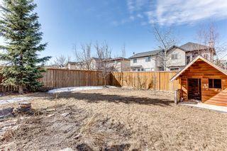 Photo 35: 544 Cougar Ridge Drive SW in Calgary: Cougar Ridge Detached for sale : MLS®# A1087689