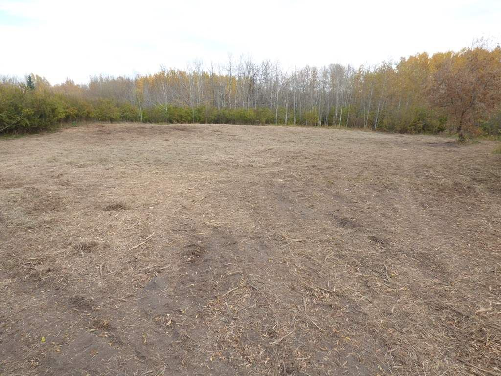 Photo 27: Photos: N1/2 SE19-57-1-W5: Rural Barrhead County Rural Land/Vacant Lot for sale : MLS®# E4217154