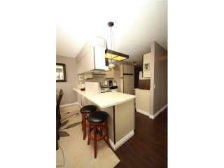 """Photo 6: 1307 3980 CARRIGAN Court in Burnaby: Government Road Condo for sale in """"DISCOVERY I"""" (Burnaby North)  : MLS®# V968039"""