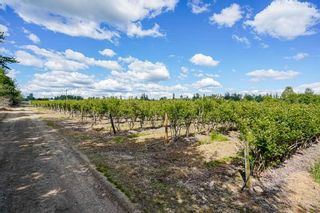 Photo 17: 21.44AC 240 STREET in Langley: Langley City Agri-Business for sale : MLS®# C8038637