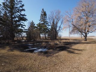 Photo 41: 68151 Road 34 W in Portage la Prairie RM: House for sale : MLS®# 202107756