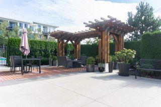 Photo 18: 205 3323 151 Street in Surrey: Morgan Creek Condo for sale (South Surrey White Rock)  : MLS®# R2409291
