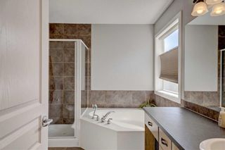Photo 29: 205 CHAPALINA Mews SE in Calgary: Chaparral Detached for sale : MLS®# C4241591
