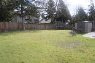 Photo 25: 6286 194B Street in Surrey: Clayton House for sale (Cloverdale)  : MLS®# R2542230