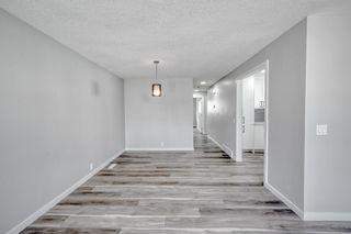 Photo 10: 39 Aberdare Road NE in Calgary: Abbeydale Detached for sale : MLS®# A1127004