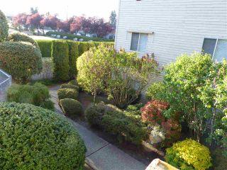 """Photo 12: 210 11806 88 Avenue in Delta: Annieville Condo for sale in """"Sungod Villa"""" (N. Delta)  : MLS®# R2568999"""