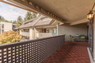 Photo 19: 317 1210 PACIFIC Street in Coquitlam: North Coquitlam Condo for sale : MLS®# R2618063