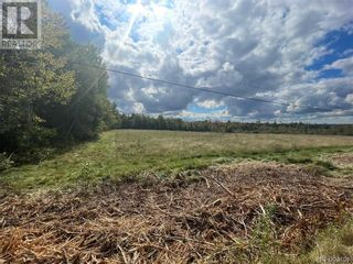 Photo 2: - Board Road in Leverville: Vacant Land for sale : MLS®# NB064229