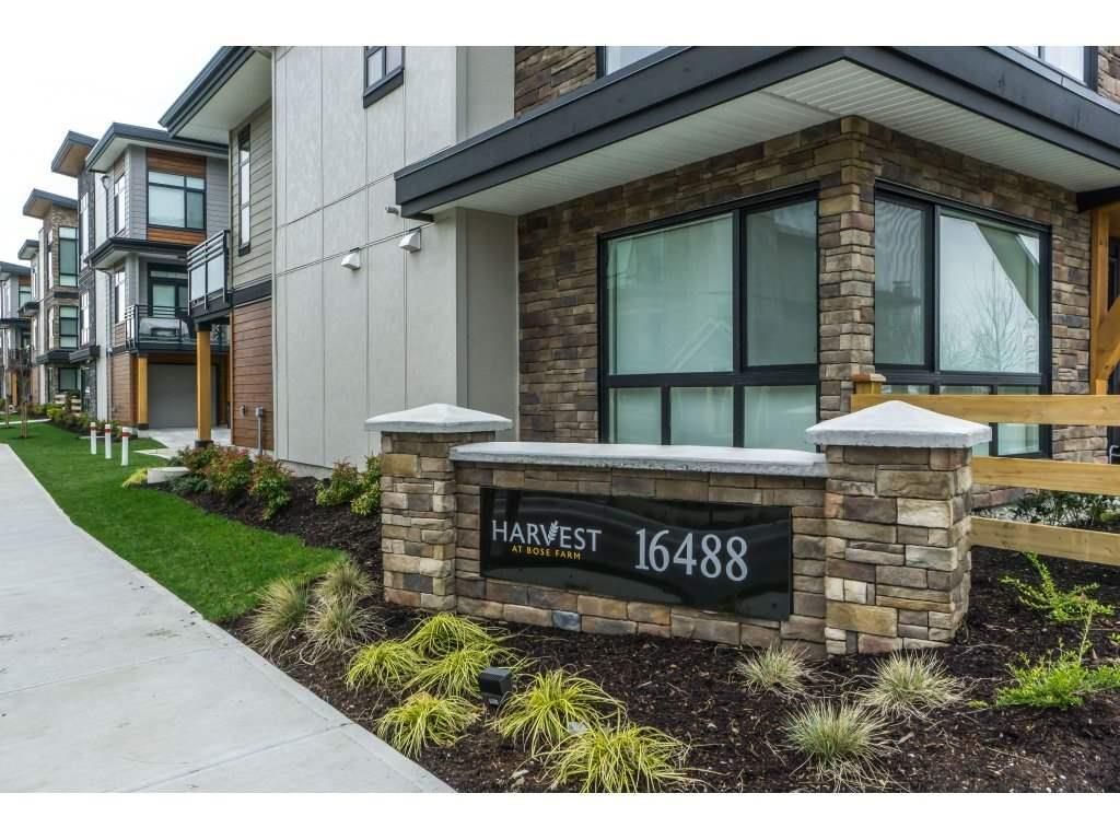 """Main Photo: 53 16488 64 Avenue in Surrey: Cloverdale BC Townhouse for sale in """"HARVEST at BOSE FARM"""" (Cloverdale)  : MLS®# R2364195"""