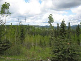 Photo 4: 265139 Jamieson Road: Rural Bighorn M.D. Residential Detached Single Family for sale : MLS®# C3620843