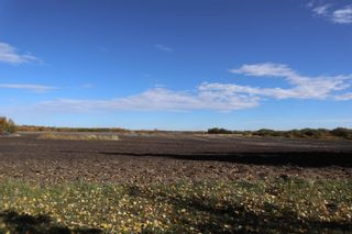 Photo 3: TWP 491 RR 273: Rural Leduc County Rural Land/Vacant Lot for sale : MLS®# E4264523