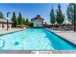 """Photo 17: 113 19433 68 Avenue in Surrey: Clayton Townhouse for sale in """"The Grove"""" (Cloverdale)  : MLS®# R2303599"""