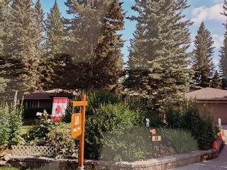 Photo 40: 48 Wolf Drive: Bragg Creek Detached for sale : MLS®# A1098484